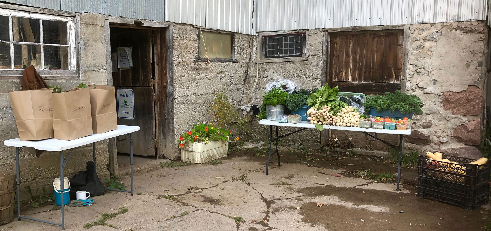 Art Farm Community Supported Agriculture