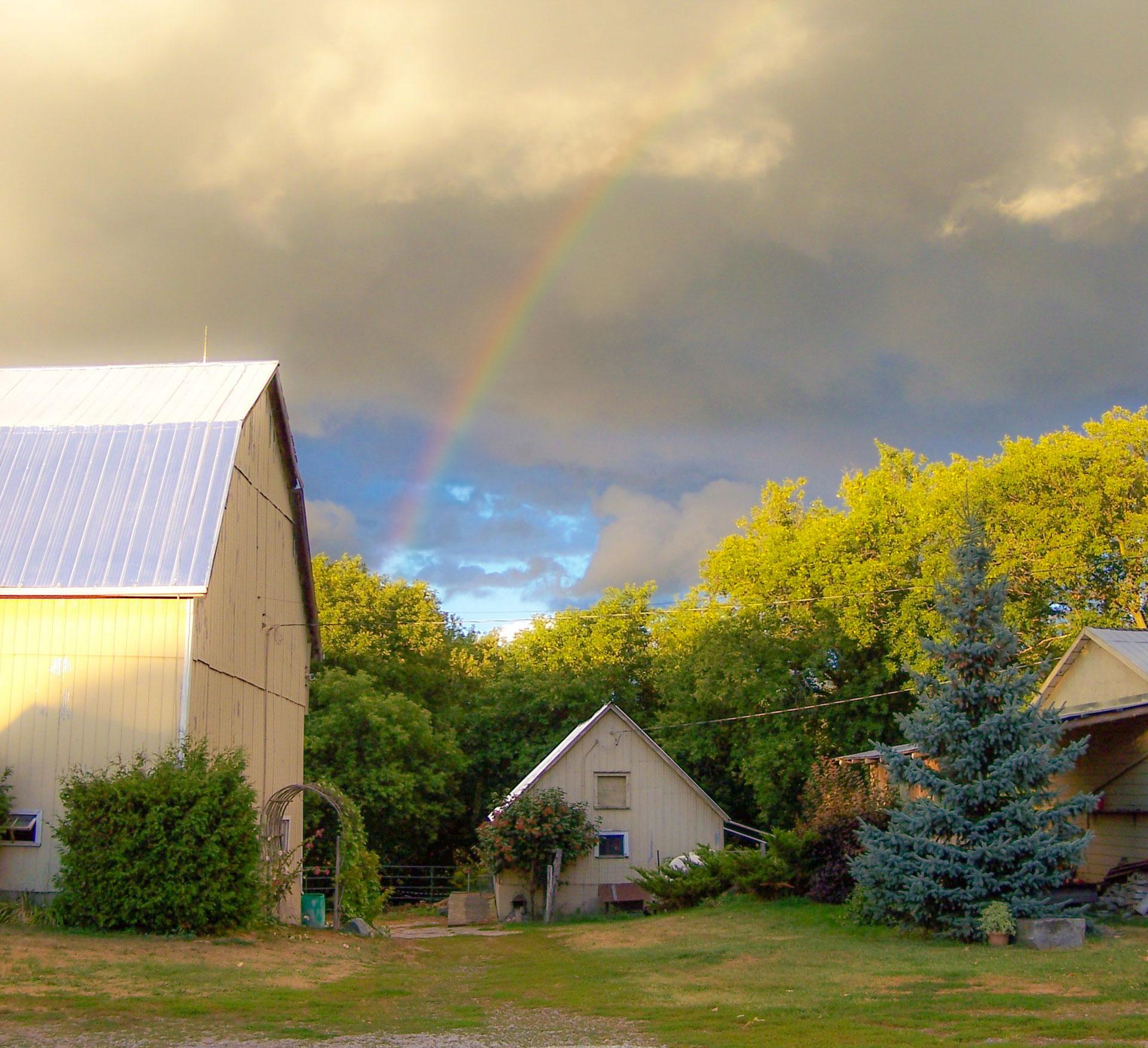 Art Farm Produce Rainbow