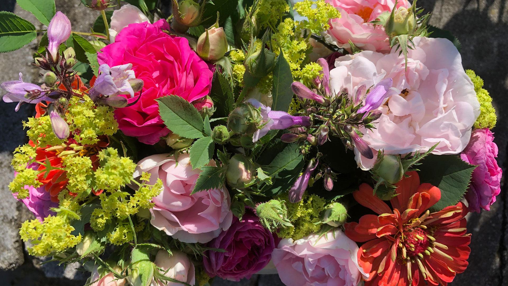 Art Farm cut flowers